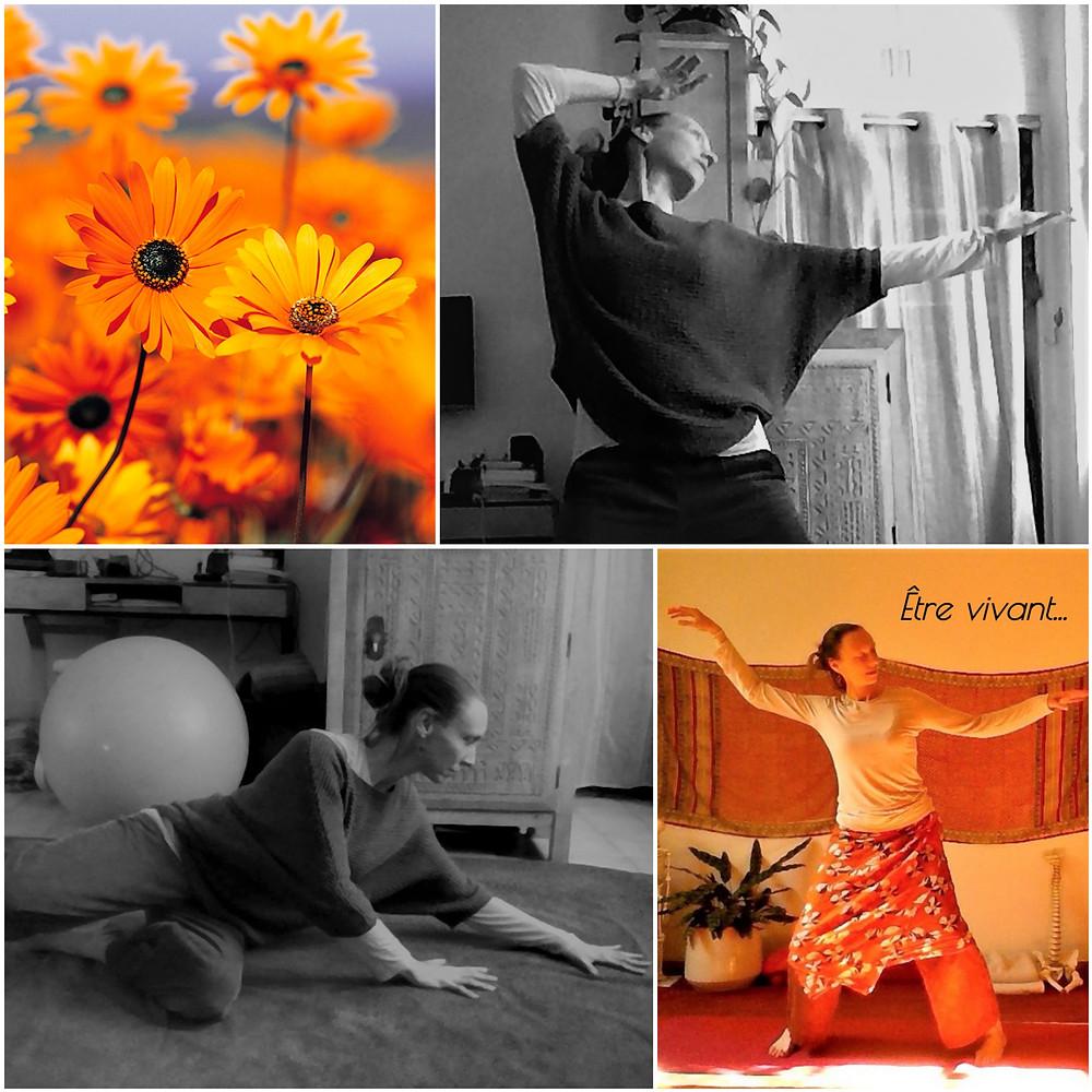 Cours de yoga avec Floria Scialino à Nantes et en ligne