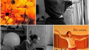 Essayer d'être en Yoga, essayer d'être vivant - Newsletter avril 2021