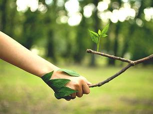 Chemin de conscience et engagement dans le monde | Groupe de pratique et de parole | Ecologie profonde | Nantes