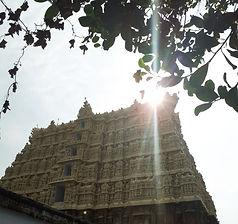 Voyage en Inde, Yoga en Inde, Ayurvéda, Inde du sud, Kerala