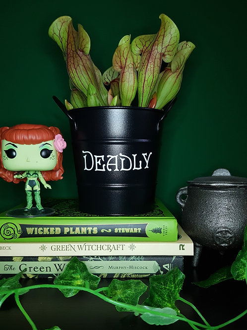 'Deadly' Planting Cauldron