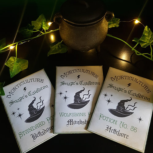 'Snape's Cauldron' Potions Class Bundle