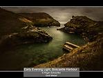 Roger Edwardes_Early Evening Light, Bosc