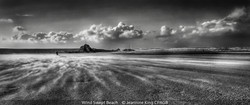 Highly Commended_Jeannine King_Wind Swept Beach