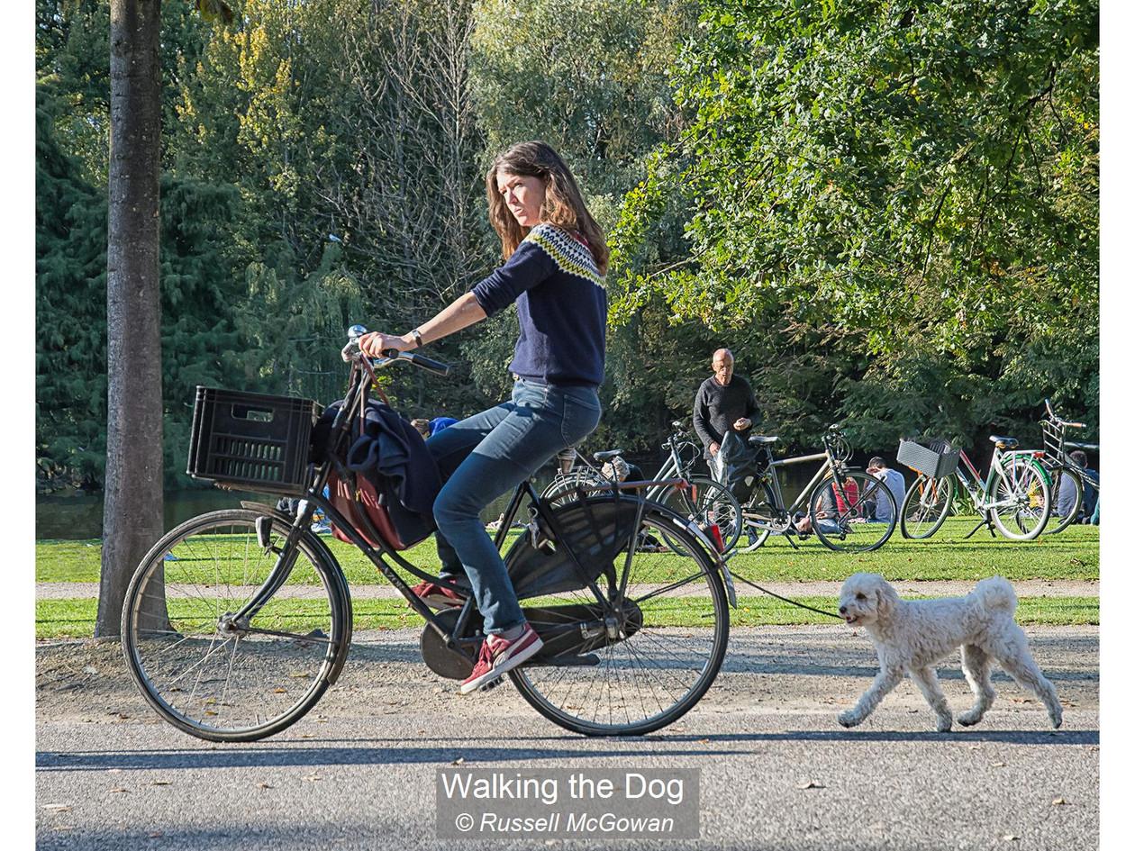 Walking the Dog_Russell McGowan.jpg
