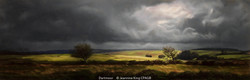 Commended_Jeannine King_Dartmoor
