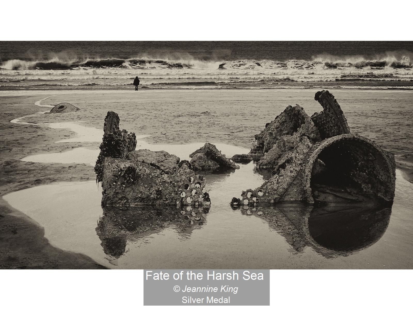 Fate of the Harsh Sea_Jeannine King_Silv