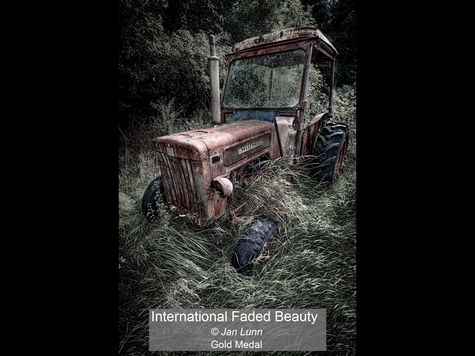 International Faded Beauty_Jan Lunn_Gold