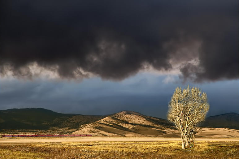 Pam Sherren_Storm Clouds Gathering