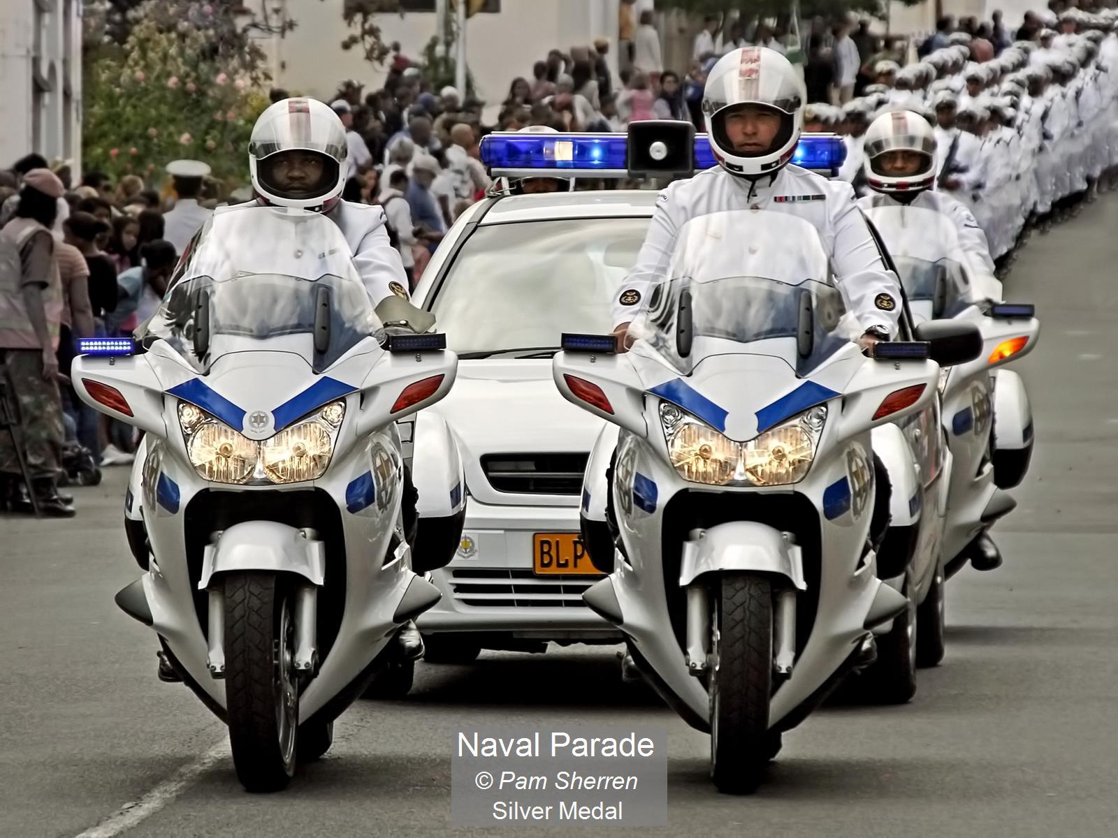Pam Sherren_Naval Parade_Silver