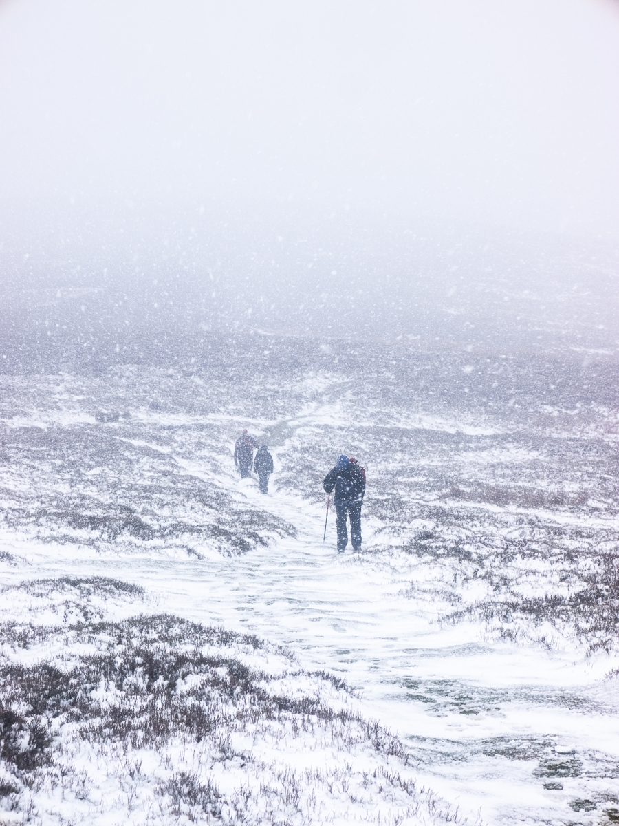 Peter Butler_Walking in a White-out_None