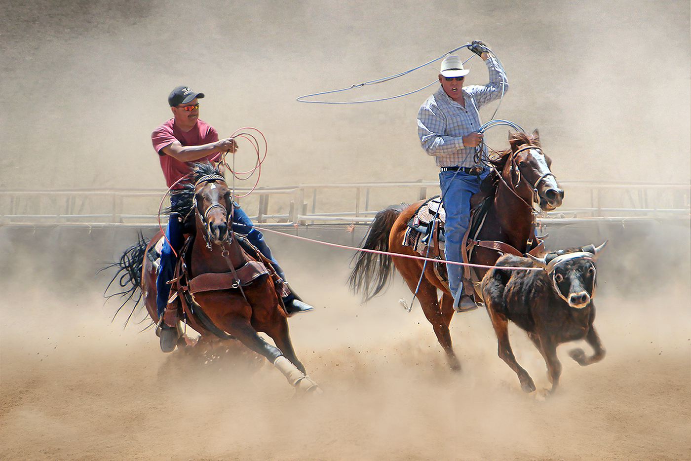 Pam Sherren_Team Roping_None
