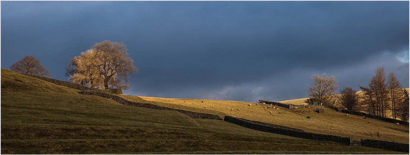 Ann Owens_Last Light on the Yorkshire Dales