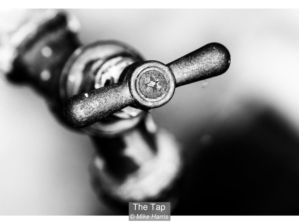 The Tap_Mike Harris.jpg