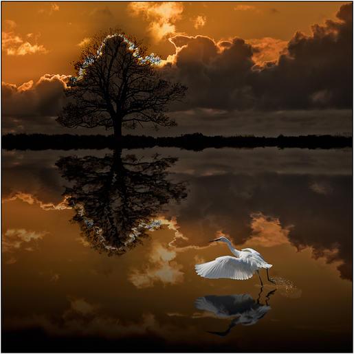 Roger Edwardes_Take Off at Sunset