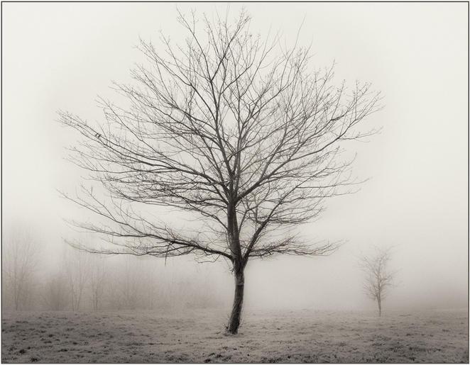 HC_Ann Owens_Autumn Mist