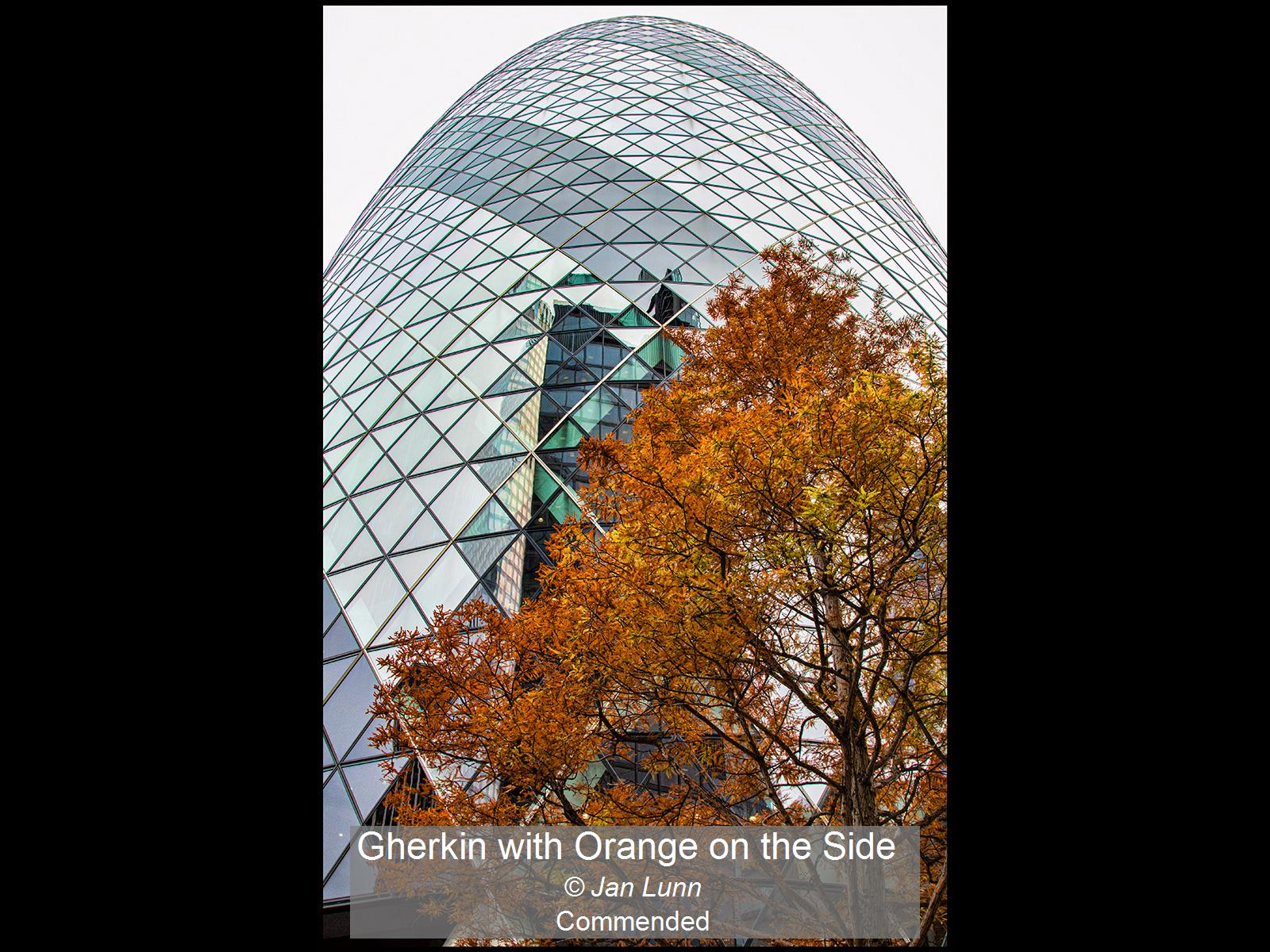 Gherkin with Orange on the Side_Jan Lunn