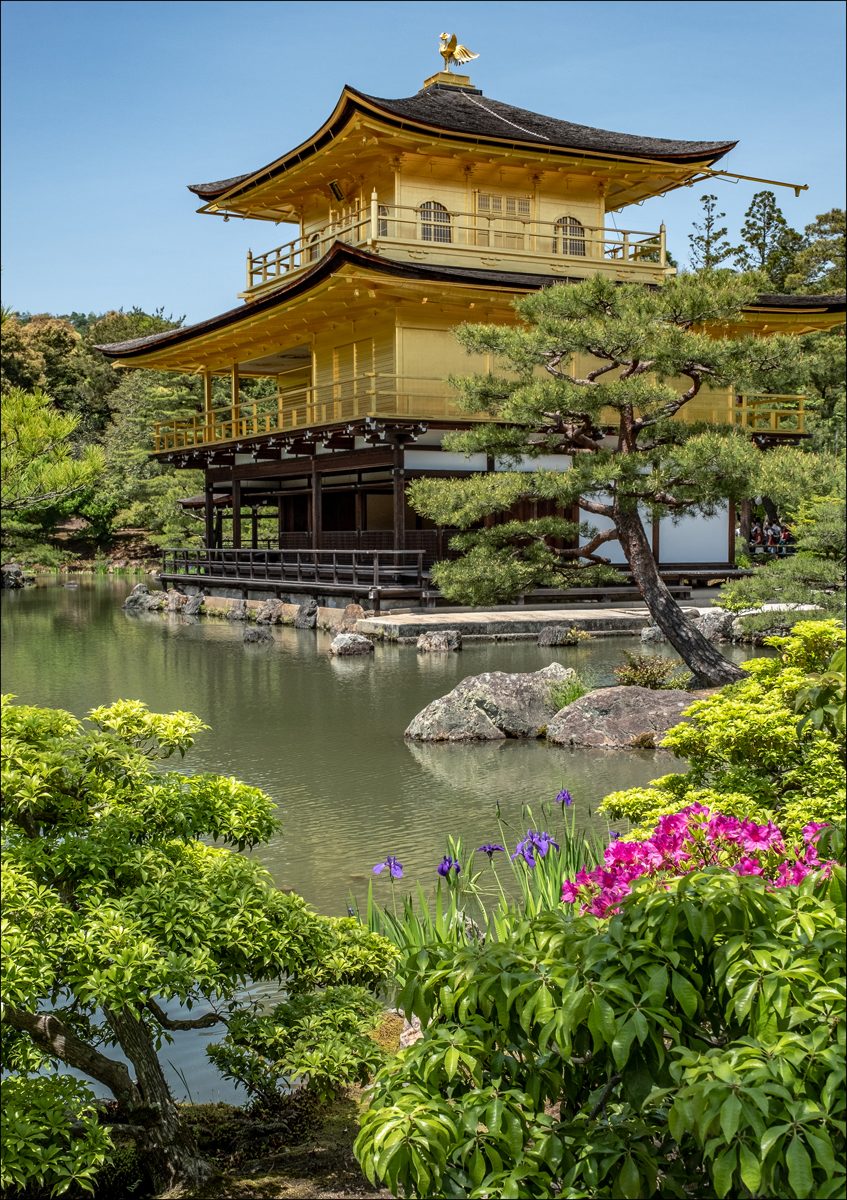 Peter Bosley_The Golden Pavilion_None