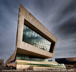 Commended_Pam Sherren_Liverpool Museum