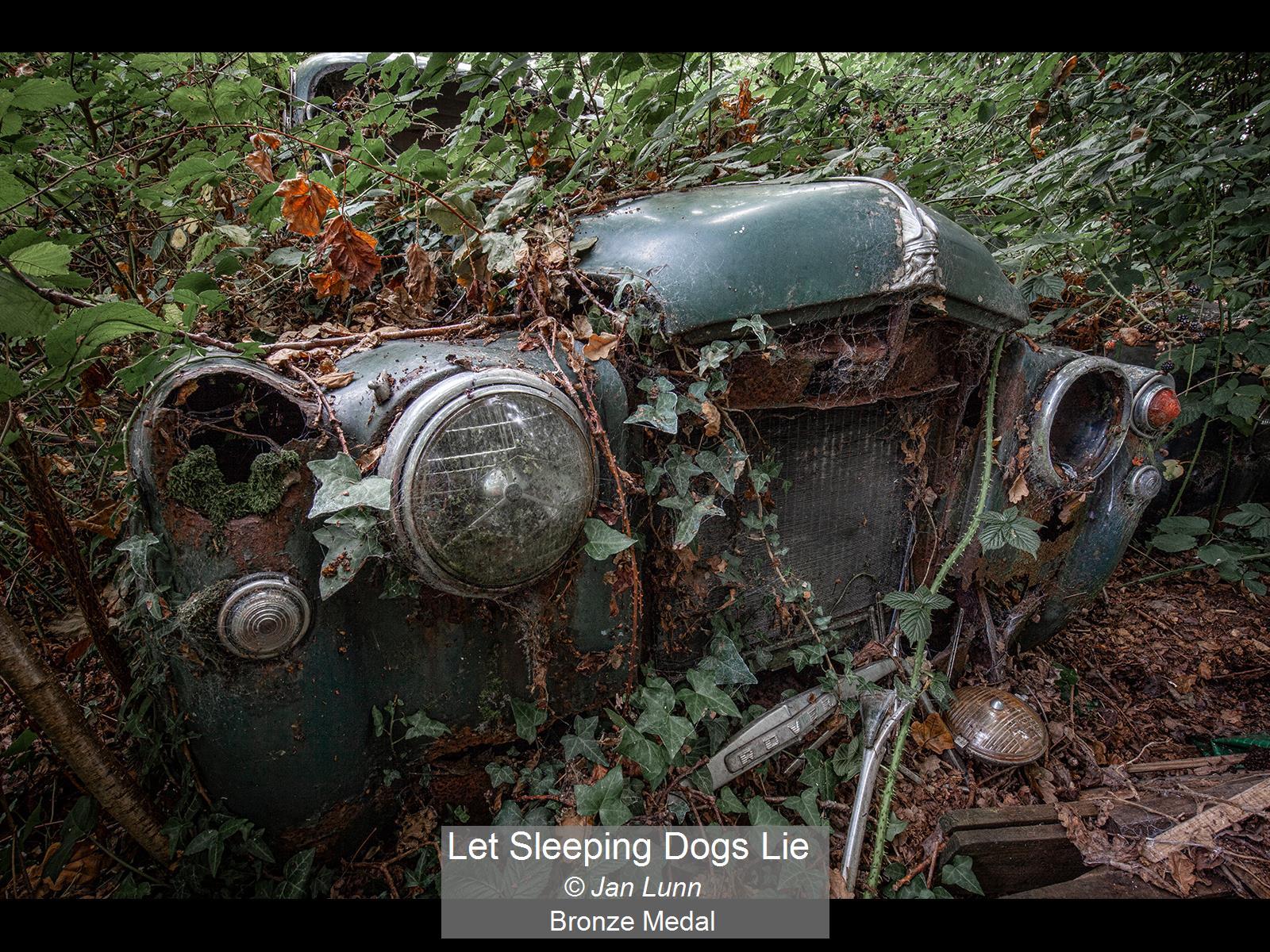 Let Sleeping Dogs Lie_Jan Lunn_Bronze