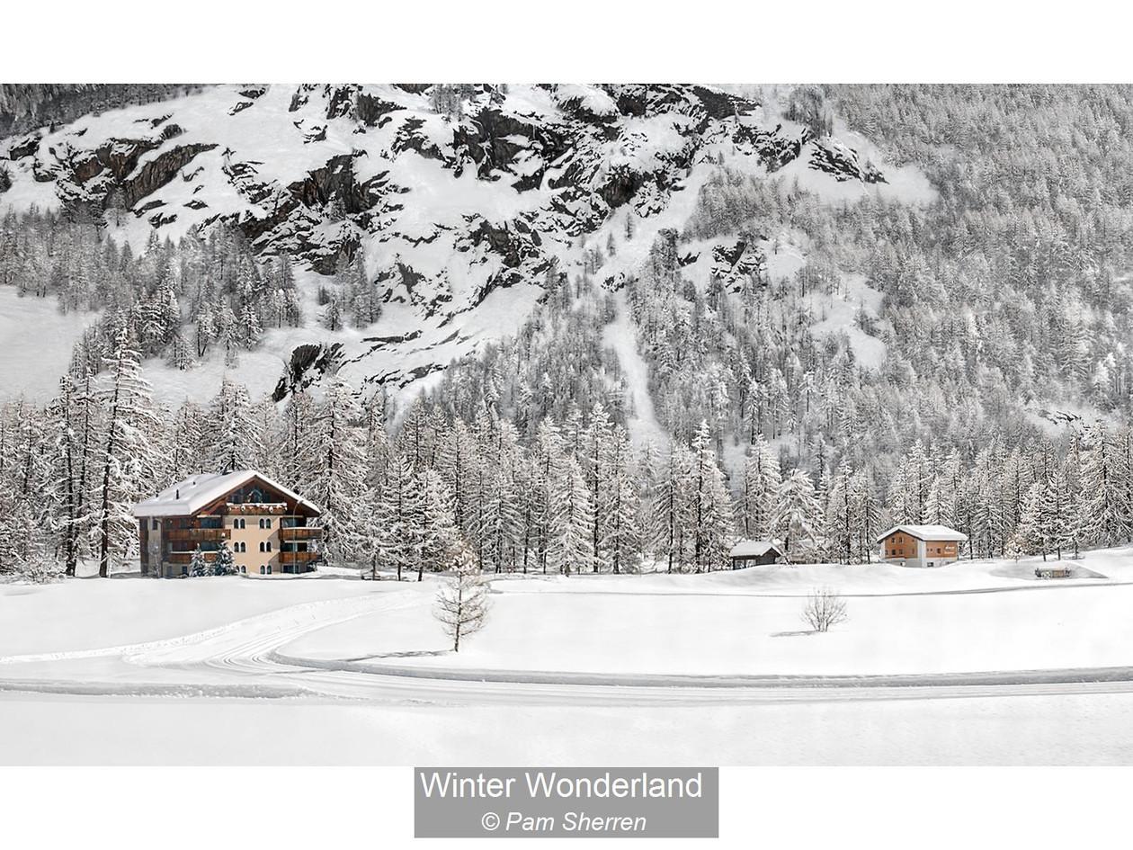 Winter Wonderland_Pam Sherren.jpg
