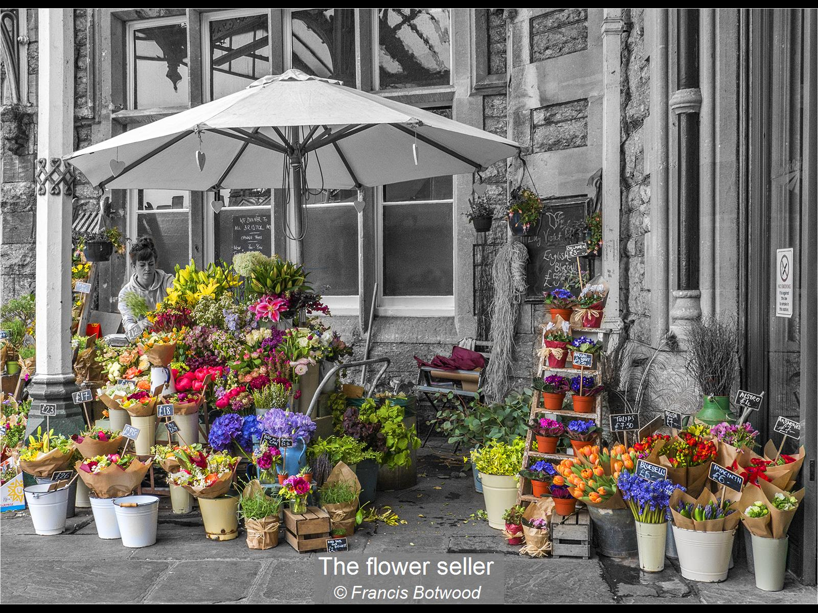 Francis Botwood_The flower seller_None