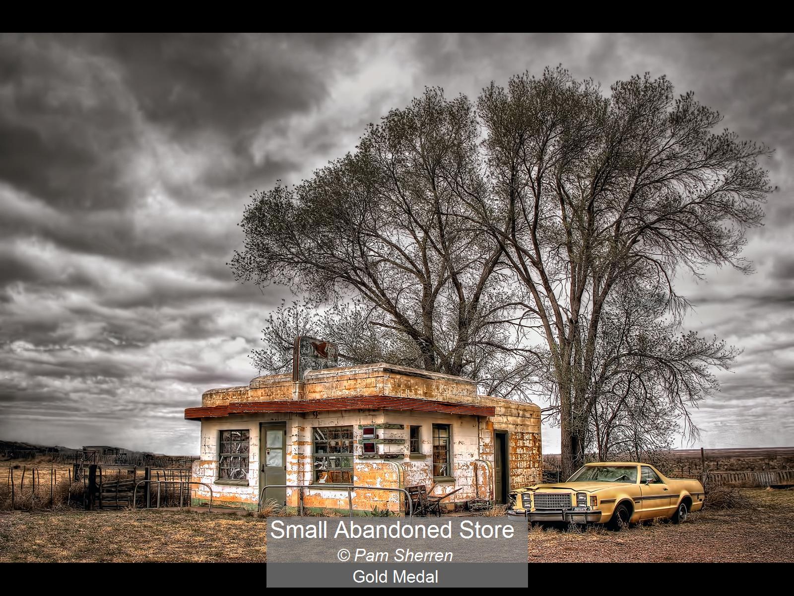 Small Abandoned Store_Pam Sherren_Gold