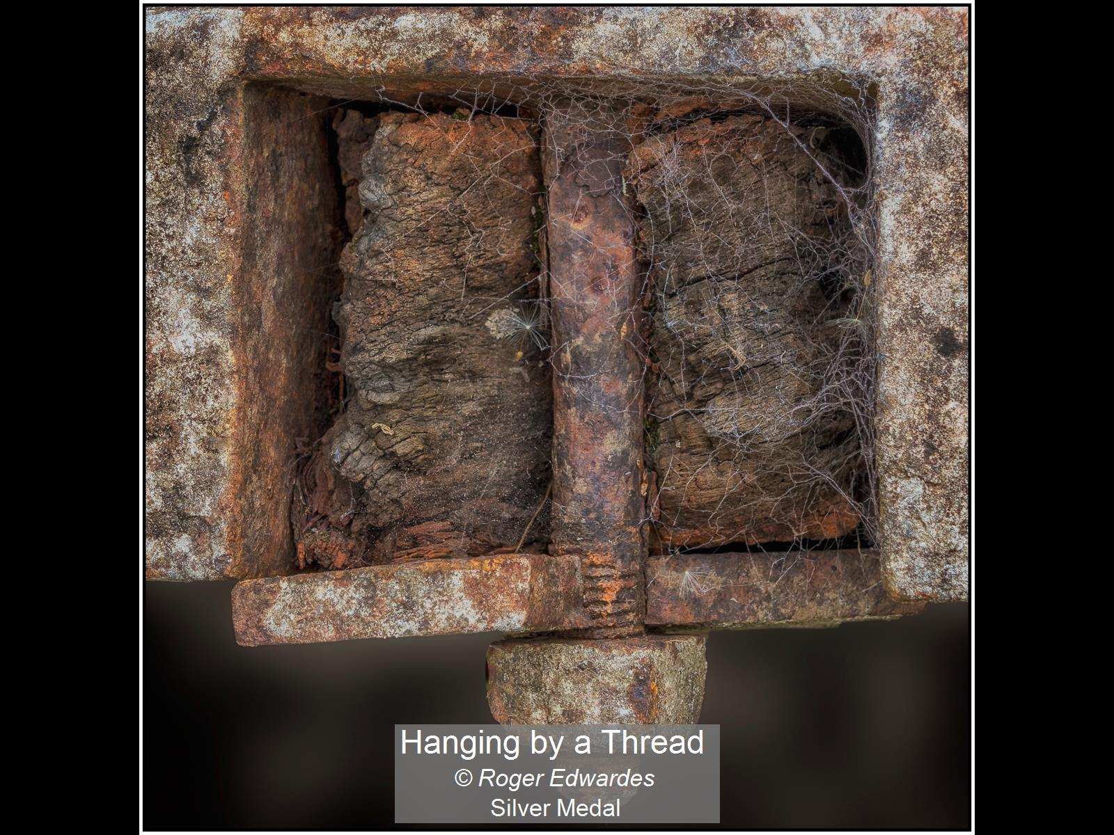 Hanging by a Thread_Roger Edwardes_Silve