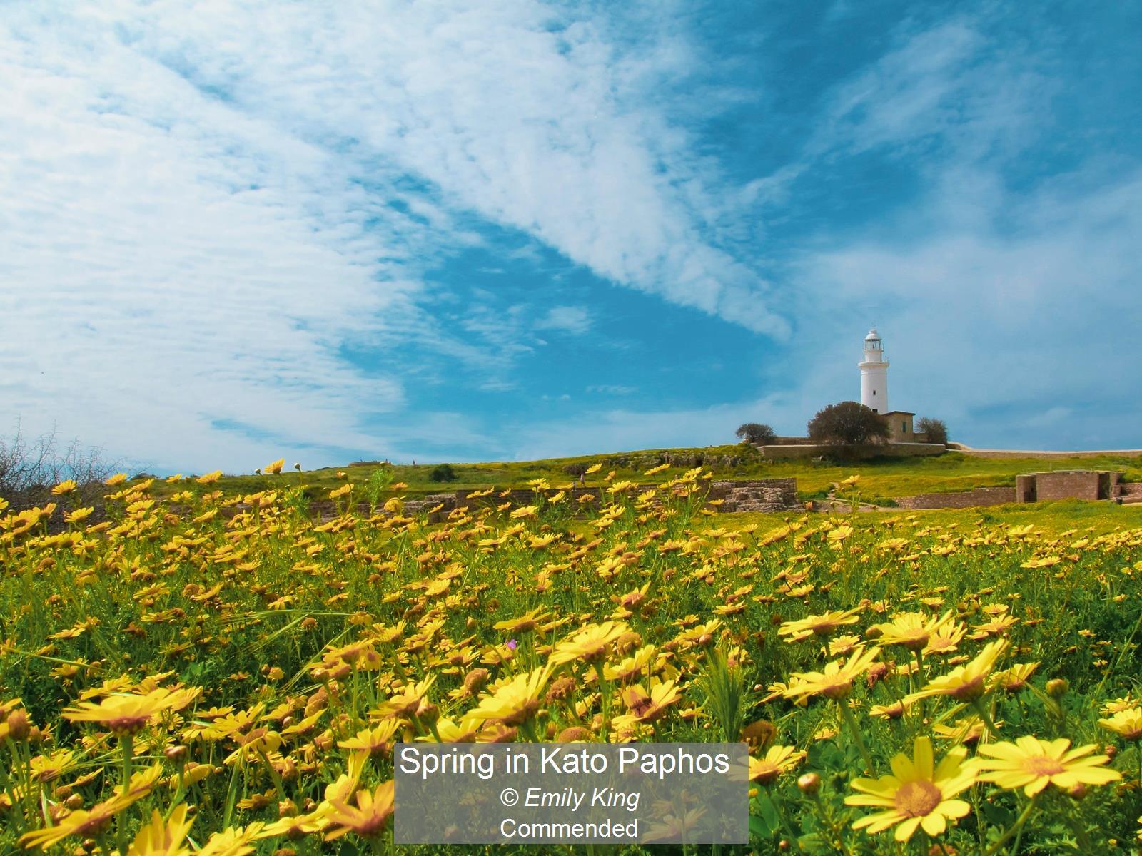 Spring in Kato Paphos_Emily King_Comm