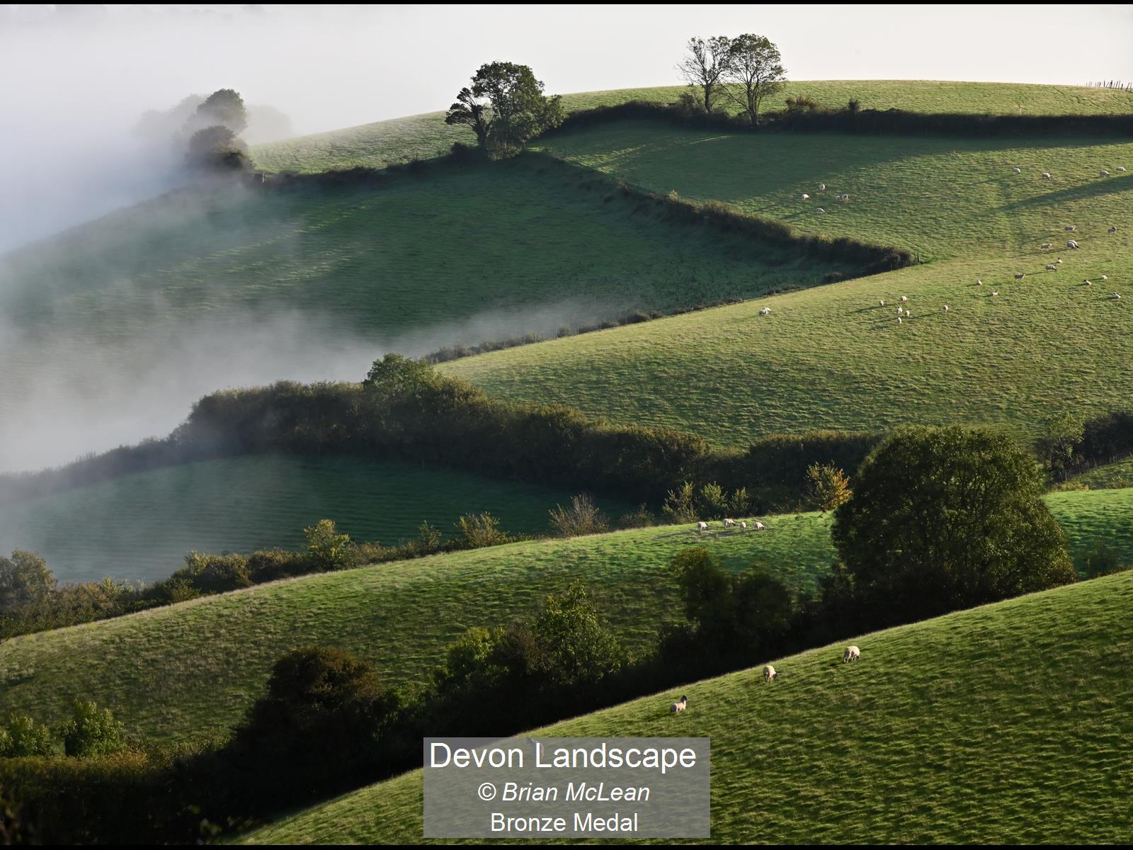 Devon Landscape_Brian McLean_Bronze