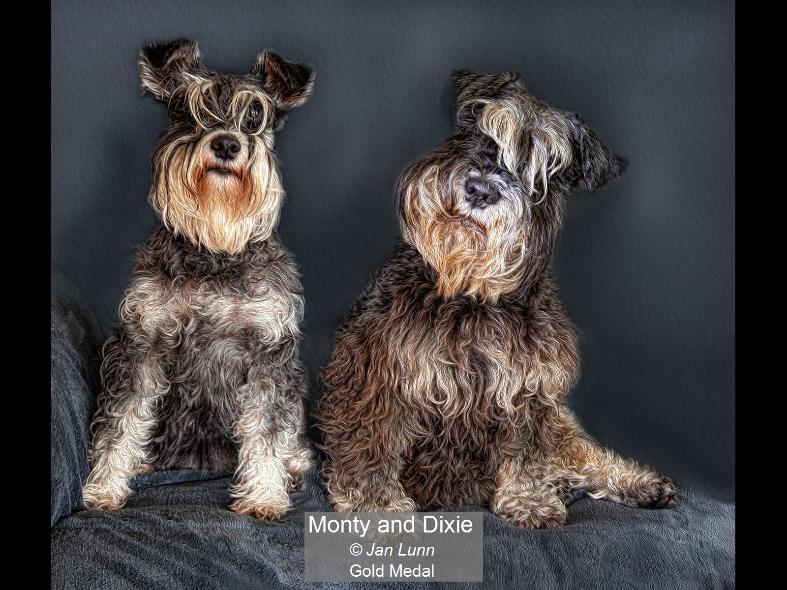 Monty and Dixie_Jan Lunn_Gold