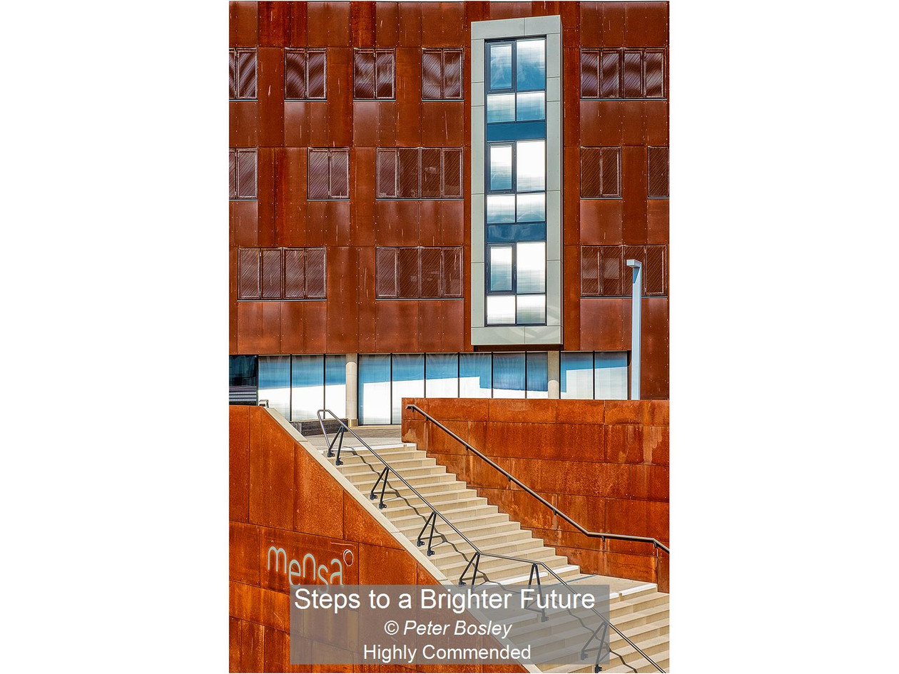 Steps to a Brighter Future_Peter Bosley_