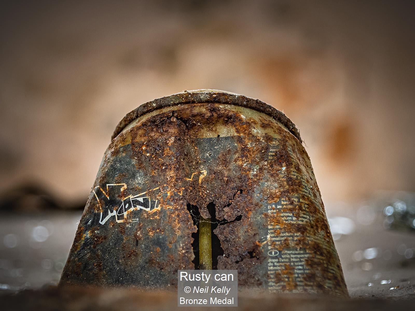 Rusty can_Neil Kelly_Bronze