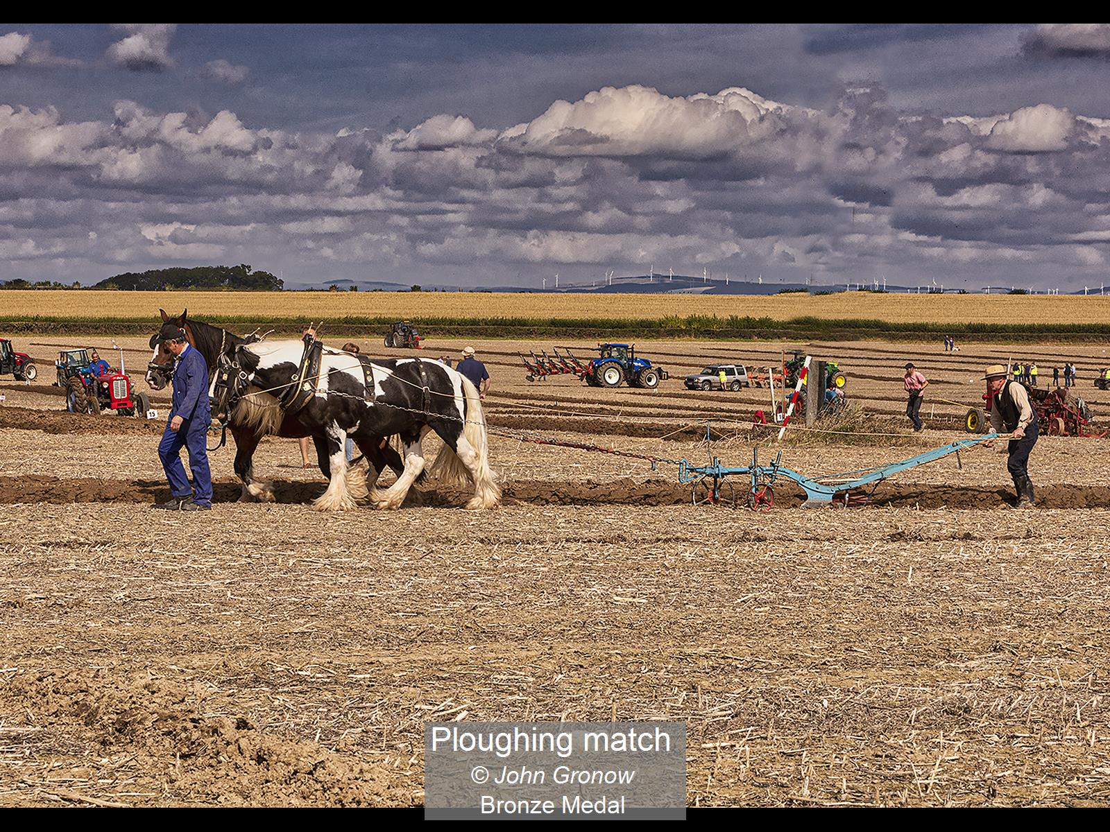 Ploughing match_John Gronow_Bronze