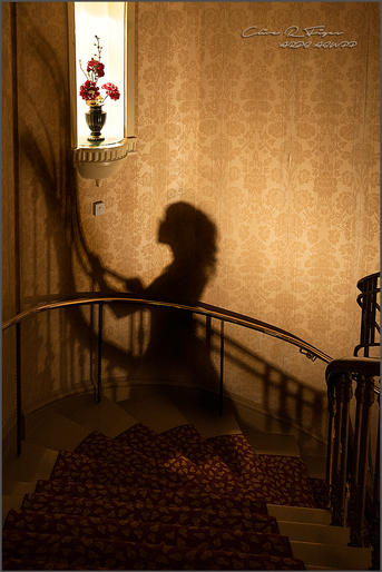 Clive Figes_Shadow on the stairs