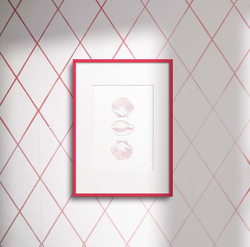ORIGINALS: The Pink Botticelli Shells Series