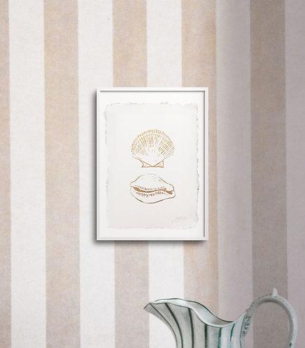 Botticelli Shells in Gold