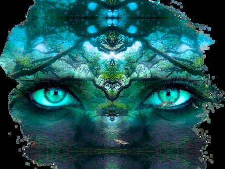 """Σαμανισμός """"Η μπλε φλόγα της Σοφίας"""""""