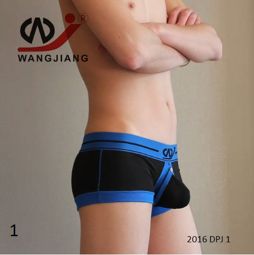 WJ Sexy Gay Men Underwear With Penis Pouch Male Underwear Slip Homme Open Cueca