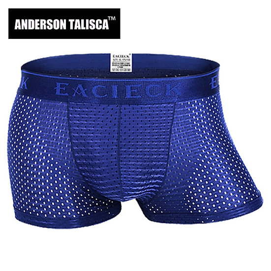 ANDERSON TALISCA Brand Silk Hollow New Mens Boxers Underwear Men Boxer Ropa