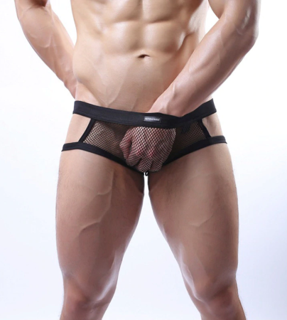 2016 NEW brand Men's super mesh briefs sexy men underwear men thong Gay Jockstra