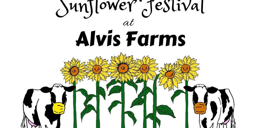 2nd Annual Sunflower Festival at Alvis Farms