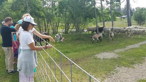 Visiting the farm...