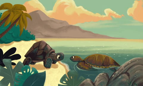The Tortoise and The Turtle