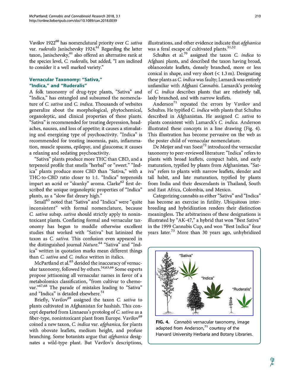 Cannabis_Systematics_at_the_Levels_of_Fa