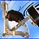 Thumbnail: BICICLETTE SCUDERIA FERRARI KID RACING