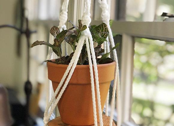 Macrame Plant Holder - Donation of $15