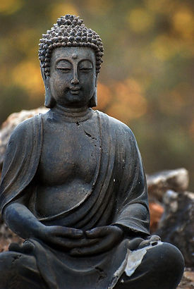 Buddha Doris.jpg
