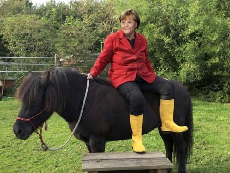 Was die Kanzlerin von Pferden lernen kann