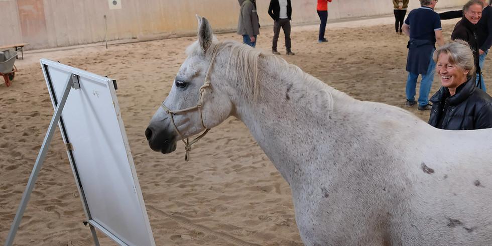 Intensivseminar 2021 - Equine-Coaching Ausbildung